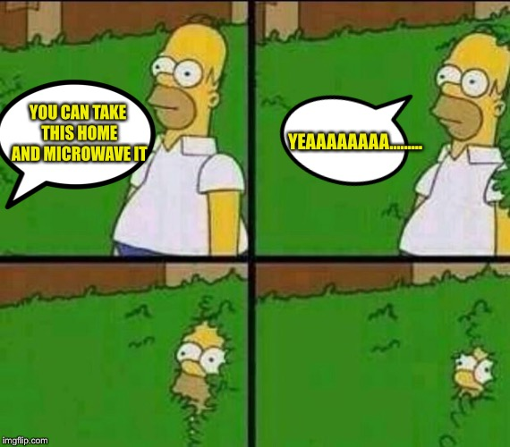 When someone offers you food | YOU CAN TAKE THIS HOME AND MICROWAVE IT YEAAAAAAAA......... | image tagged in homer simpson in bush - large | made w/ Imgflip meme maker