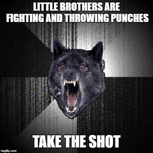 Insanity Wolf | LITTLE BROTHERS ARE FIGHTING AND THROWING PUNCHES TAKE THE SHOT | image tagged in memes,insanity wolf | made w/ Imgflip meme maker