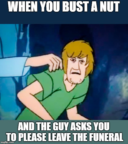 Shaggy meme | WHEN YOU BUST A NUT AND THE GUY ASKS YOU TO PLEASE LEAVE THE FUNERAL | image tagged in shaggy meme | made w/ Imgflip meme maker