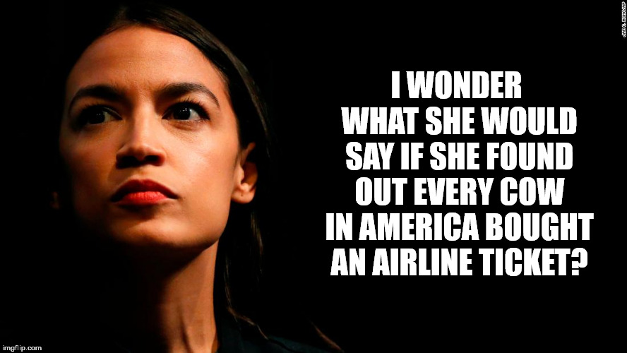 Cows on the Plane | I WONDER WHAT SHE WOULD SAY IF SHE FOUND OUT EVERY COW IN AMERICA BOUGHT AN AIRLINE TICKET? | image tagged in ocasio-cortez super genius | made w/ Imgflip meme maker