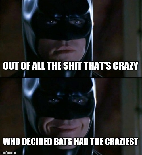 Batman Smiles | OUT OF ALL THE SHIT THAT'S CRAZY WHO DECIDED BATS HAD THE CRAZIEST | image tagged in memes,batman smiles | made w/ Imgflip meme maker