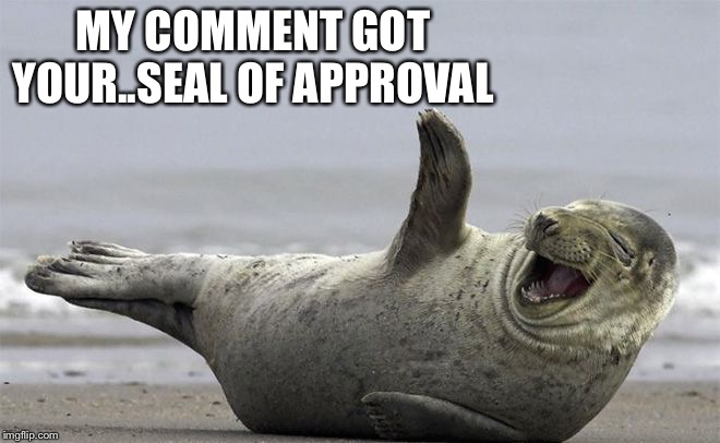 ROFL | MY COMMENT GOT YOUR..SEAL OF APPROVAL | image tagged in rofl | made w/ Imgflip meme maker