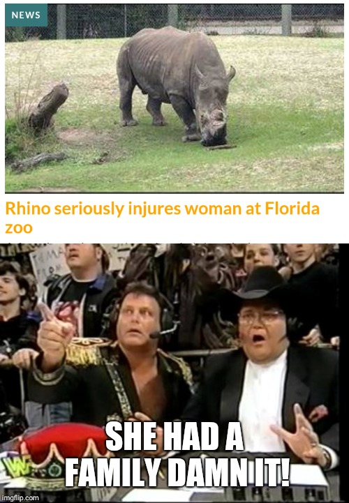 SHE HAD A FAMILY DAMN IT! | image tagged in jim ross,memes,wwe,rhino | made w/ Imgflip meme maker
