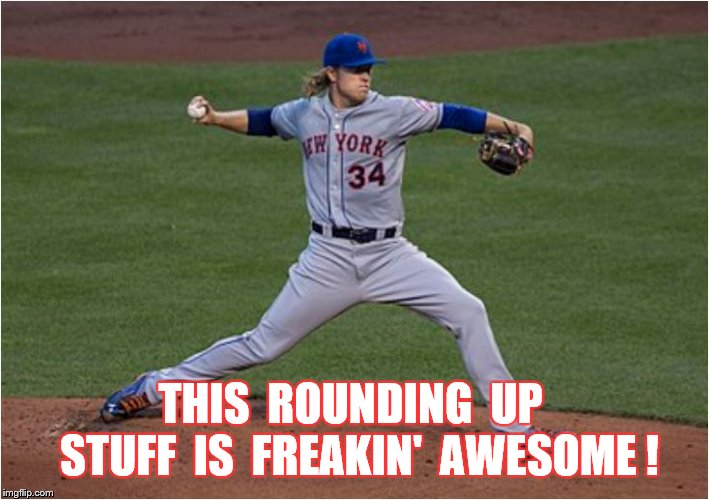 THIS  ROUNDING  UP  STUFF  IS  FREAKIN'  AWESOME ! | made w/ Imgflip meme maker