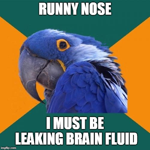 Paranoid Parrot | RUNNY NOSE I MUST BE LEAKING BRAIN FLUID | image tagged in memes,paranoid parrot,AdviceAnimals | made w/ Imgflip meme maker