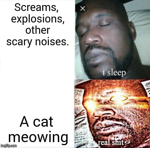 Sleeping Shaq Meme | Screams, explosions, other scary noises. A cat meowing | image tagged in memes,sleeping shaq | made w/ Imgflip meme maker