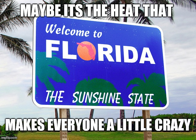 Florida | MAYBE ITS THE HEAT THAT MAKES EVERYONE A LITTLE CRAZY | image tagged in florida | made w/ Imgflip meme maker