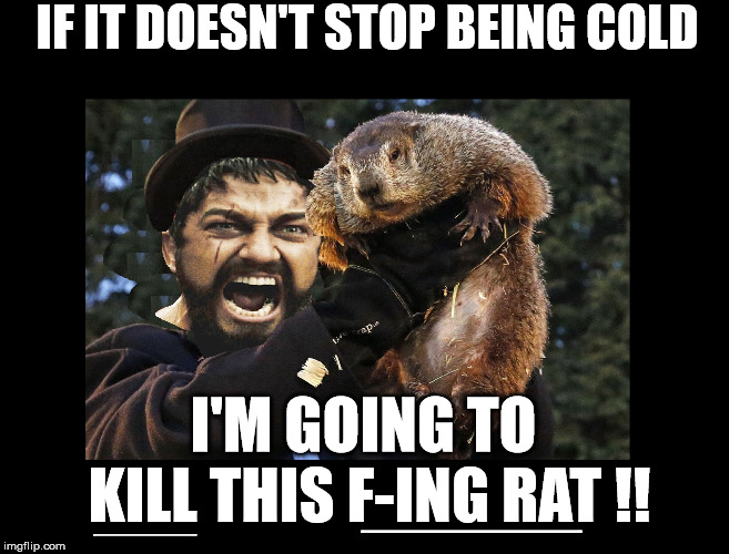 IF IT DOESN'T STOP BEING COLD I'M GOING TO KILL THIS F-ING RAT !! _______ _________ | image tagged in kill groundhog | made w/ Imgflip meme maker