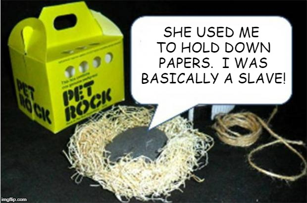 Pet Rock | SHE USED ME TO HOLD DOWN PAPERS.  I WAS BASICALLY A SLAVE! | image tagged in pet rock | made w/ Imgflip meme maker