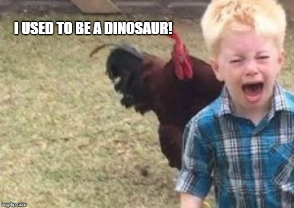 Chicken's used to be dinosaurs. | I USED TO BE A DINOSAUR! | image tagged in funny,chicken | made w/ Imgflip meme maker