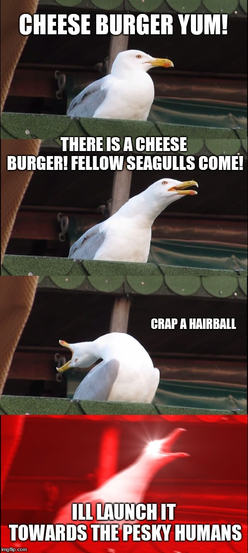 cheese burger meyham | CHEESE BURGER YUM! THERE IS A CHEESE BURGER! FELLOW SEAGULLS COME! CRAP A HAIRBALL ILL LAUNCH IT TOWARDS THE PESKY HUMANS | image tagged in memes,inhaling seagull,cheese,burger,seagull,hair | made w/ Imgflip meme maker