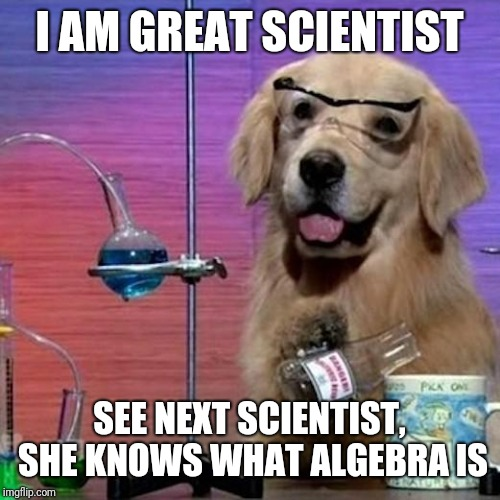 I Have No Idea What I Am Doing Dog | I AM GREAT SCIENTIST SEE NEXT SCIENTIST, SHE KNOWS WHAT ALGEBRA IS | image tagged in memes,i have no idea what i am doing dog | made w/ Imgflip meme maker