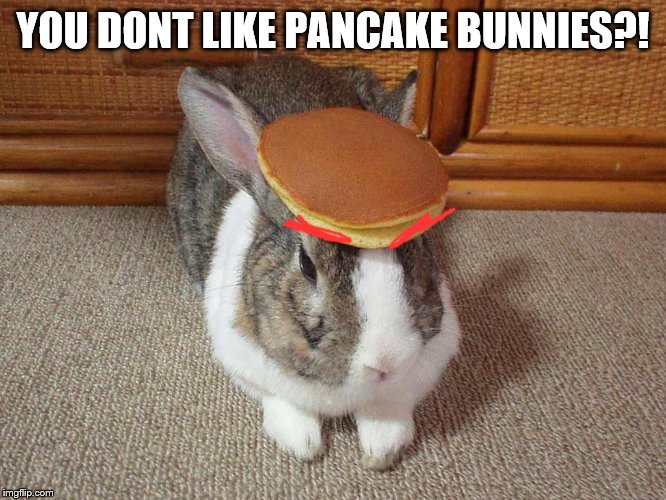 YOU DONT LIKE PANCAKE BUNNIES?! | made w/ Imgflip meme maker