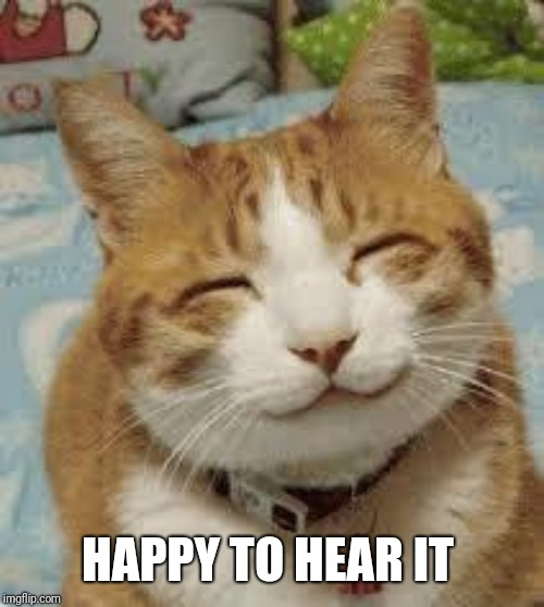 Happy cat | HAPPY TO HEAR IT | image tagged in happy cat | made w/ Imgflip meme maker