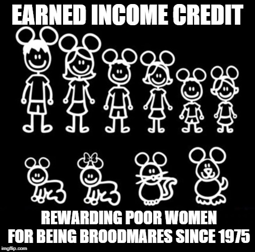 Earned Income Credit | EARNED INCOME CREDIT REWARDING POOR WOMEN FOR BEING BROODMARES SINCE 1975 | image tagged in broodmare,earned income credit,eic,reproduction,taxes,women | made w/ Imgflip meme maker