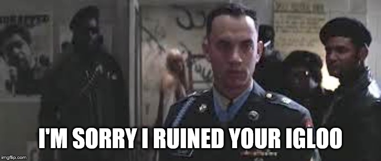 Forrest Gump black panther | I'M SORRY I RUINED YOUR IGLOO | image tagged in forrest gump black panther | made w/ Imgflip meme maker