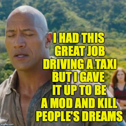 Jumanji Don't Cry | I HAD THIS GREAT JOB DRIVING A TAXI BUT I GAVE IT UP TO BE A MOD AND KILL PEOPLE'S DREAMS | image tagged in jumanji don't cry | made w/ Imgflip meme maker