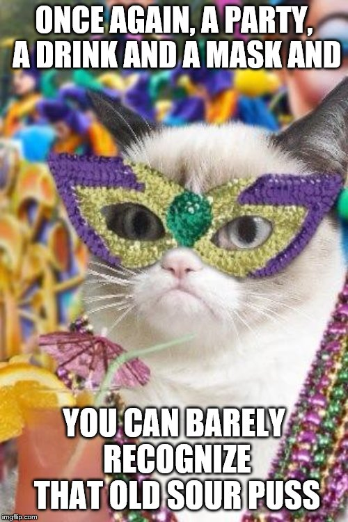 Mardi Gras | ONCE AGAIN, A PARTY, A DRINK AND A MASK AND YOU CAN BARELY RECOGNIZE THAT OLD SOUR PUSS | image tagged in mardi gras | made w/ Imgflip meme maker