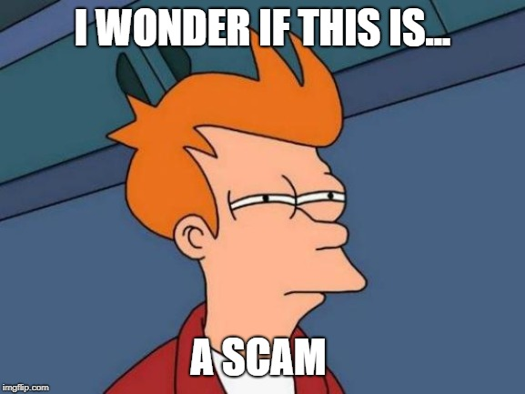 Futurama Fry Meme | I WONDER IF THIS IS... A SCAM | image tagged in memes,futurama fry | made w/ Imgflip meme maker