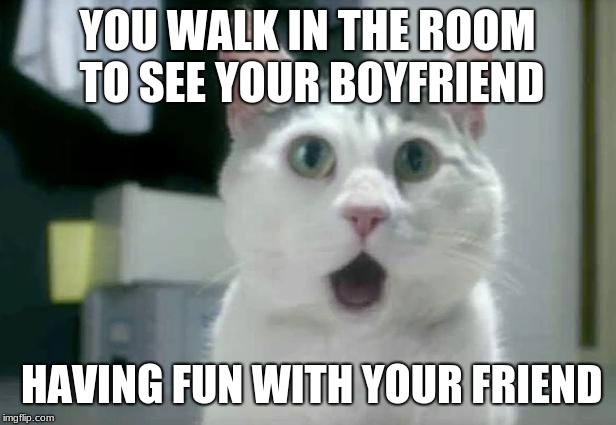 OMG Cat Meme | YOU WALK IN THE ROOM TO SEE YOUR BOYFRIEND HAVING FUN WITH YOUR FRIEND | image tagged in memes,omg cat | made w/ Imgflip meme maker