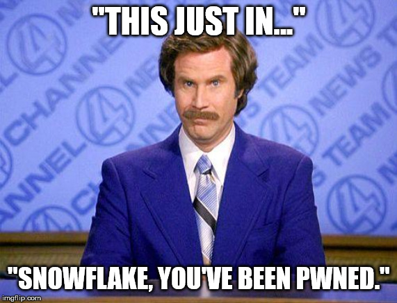 "Whats new Ron? | ""THIS JUST IN..."" ""SNOWFLAKE, YOU'VE BEEN PWNED."" 