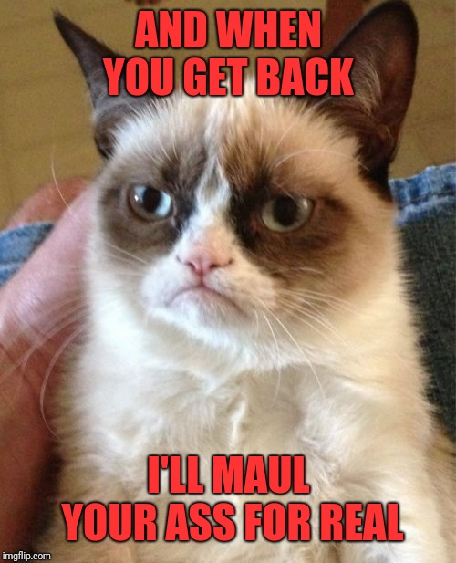 Grumpy Cat Meme | AND WHEN YOU GET BACK I'LL MAUL YOUR ASS FOR REAL | image tagged in memes,grumpy cat | made w/ Imgflip meme maker