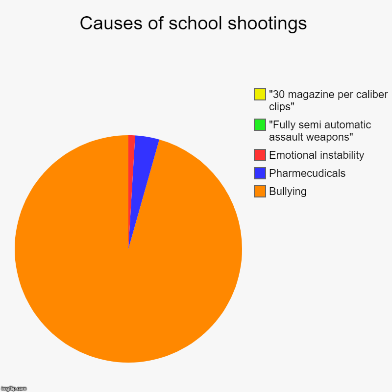 "Causes of school shootings | Bullying, Pharmecudicals, Emotional instability, ""Fully semi automatic assault weapons"", ""30 magazine per calib 