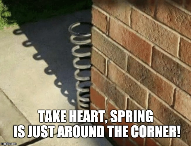 It is literally just around the corner. |  TAKE HEART, SPRING IS JUST AROUND THE CORNER! | image tagged in springtime | made w/ Imgflip meme maker