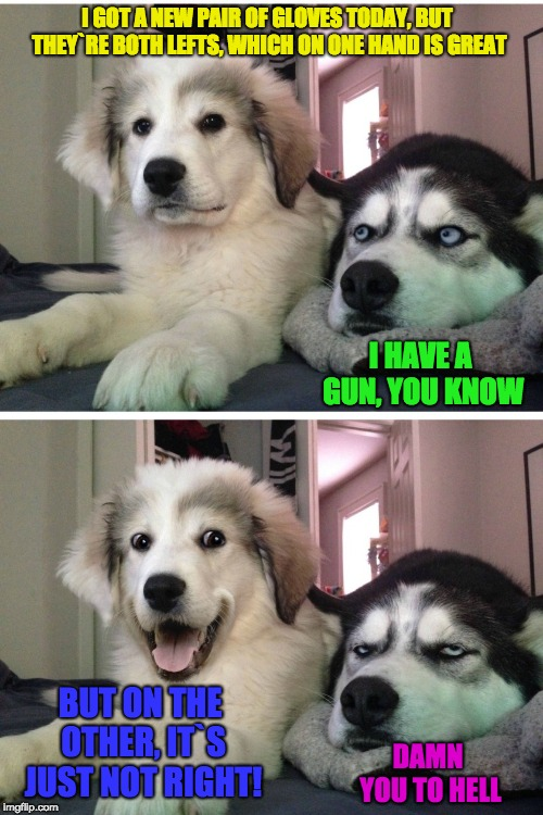 You could always give the other to a homeless guy I guess... | I GOT A NEW PAIR OF GLOVES TODAY, BUT THEY`RE BOTH LEFTS, WHICH ON ONE HAND IS GREAT BUT ON THE OTHER, IT`S JUST NOT RIGHT! I HAVE A GUN, YO | image tagged in bad pun dogs | made w/ Imgflip meme maker