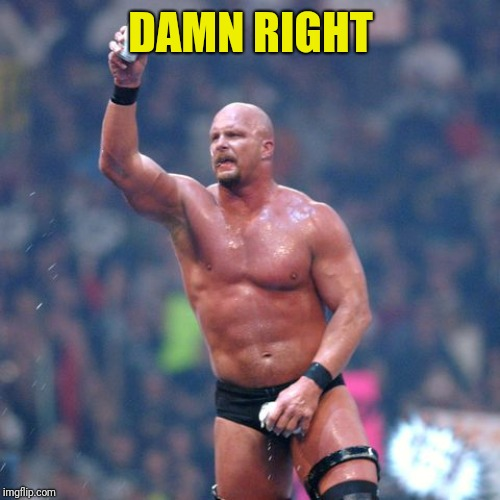 Stone Cold Steve Austin | DAMN RIGHT | image tagged in stone cold steve austin | made w/ Imgflip meme maker