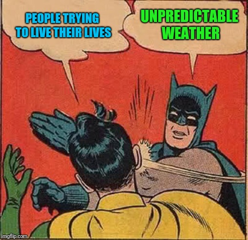 Batman Slapping Robin Meme | PEOPLE TRYING TO LIVE THEIR LIVES UNPREDICTABLE WEATHER | image tagged in memes,batman slapping robin | made w/ Imgflip meme maker