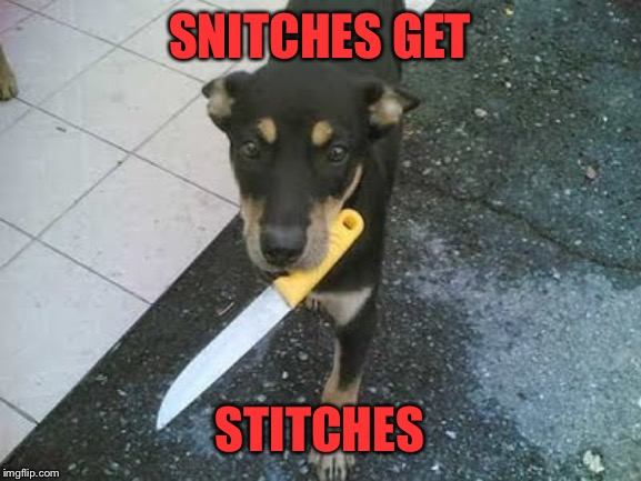 SNITCHES GET STITCHES | made w/ Imgflip meme maker