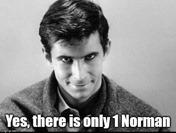 Norman Bates | Yes, there is only 1 Norman | image tagged in norman bates | made w/ Imgflip meme maker