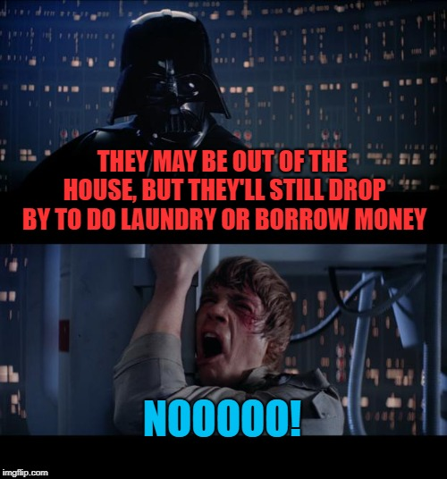 Star Wars No Meme | THEY MAY BE OUT OF THE HOUSE, BUT THEY'LL STILL DROP BY TO DO LAUNDRY OR BORROW MONEY NOOOOO! | image tagged in memes,star wars no | made w/ Imgflip meme maker