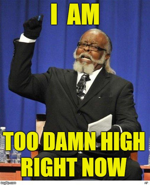 Too Damn High | I  AM TOO DAMN HIGH RIGHT NOW | image tagged in the amount of x is too damn high,so high right now | made w/ Imgflip meme maker