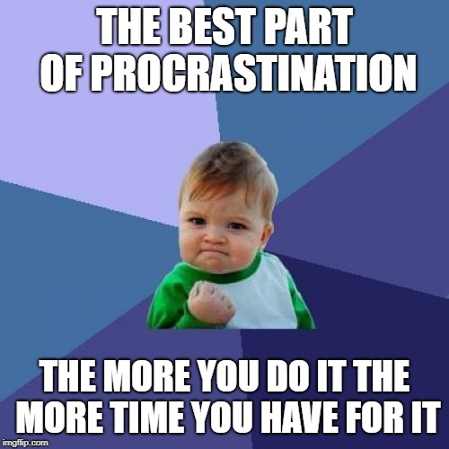 Banking procrastination time | THE BEST PART OF PROCRASTINATION THE MORE YOU DO IT THE MORE TIME YOU HAVE FOR IT | image tagged in memes,success kid,procrastination | made w/ Imgflip meme maker
