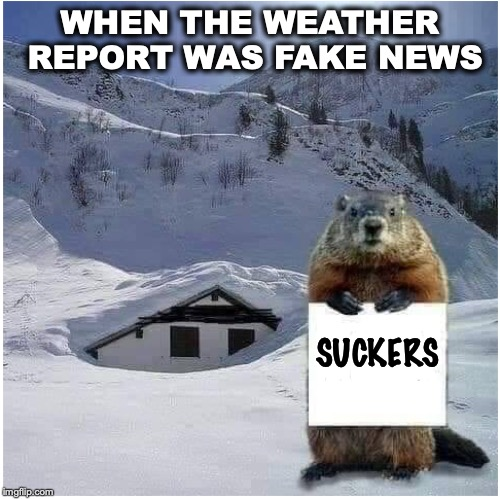 Punked By Punxsutawney | WHEN THE WEATHER REPORT WAS FAKE NEWS SUCKERS | image tagged in punxsutawney phil,cold weather,fake news | made w/ Imgflip meme maker