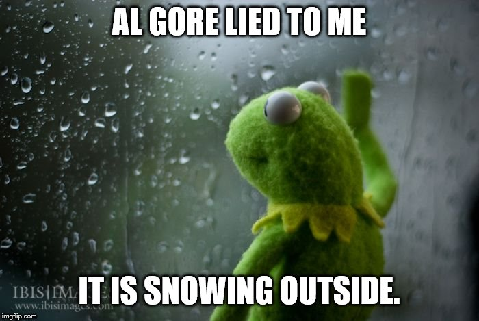 kermit window | AL GORE LIED TO ME IT IS SNOWING OUTSIDE. | image tagged in kermit window | made w/ Imgflip meme maker