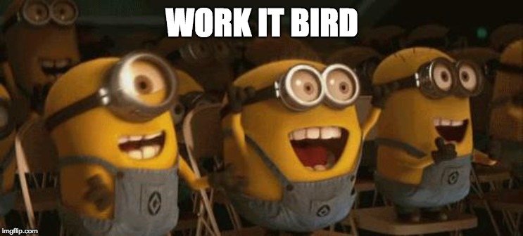 Cheering Minions | WORK IT BIRD | image tagged in cheering minions | made w/ Imgflip meme maker