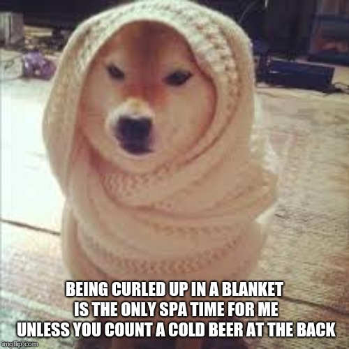 I rather stay curled in a cocoon at my couch or with every blanket on my bed |  BEING CURLED UP IN A BLANKET IS THE ONLY SPA TIME FOR ME UNLESS YOU COUNT A COLD BEER AT THE BACK | image tagged in blanket,memes,curled up,spa | made w/ Imgflip meme maker