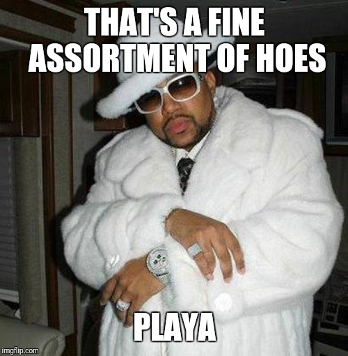 pimp c | THAT'S A FINE ASSORTMENT OF HOES PLAYA | image tagged in pimp c | made w/ Imgflip meme maker