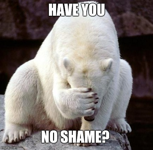 shame | HAVE YOU NO SHAME? | image tagged in shame | made w/ Imgflip meme maker
