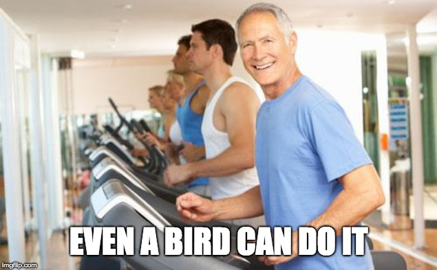 treadmill | EVEN A BIRD CAN DO IT | image tagged in treadmill | made w/ Imgflip meme maker