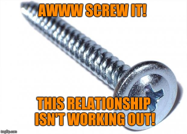 Screw | AWWW SCREW IT! THIS RELATIONSHIP ISN'T WORKING OUT! | image tagged in screw | made w/ Imgflip meme maker