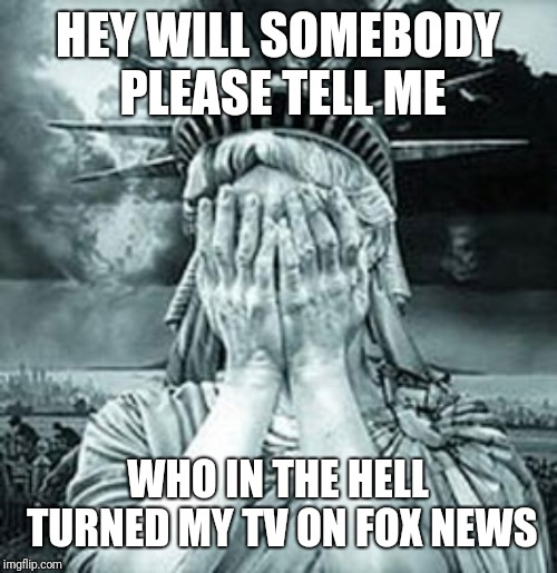 Statue of Liberty Facepalm | HEY WILL SOMEBODY PLEASE TELL ME WHO IN THE HELL TURNED MY TV ON FOX NEWS | image tagged in statue of liberty facepalm | made w/ Imgflip meme maker