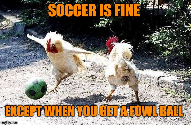 cock soccer | SOCCER IS FINE EXCEPT WHEN YOU GET A FOWL BALL | image tagged in cock soccer | made w/ Imgflip meme maker