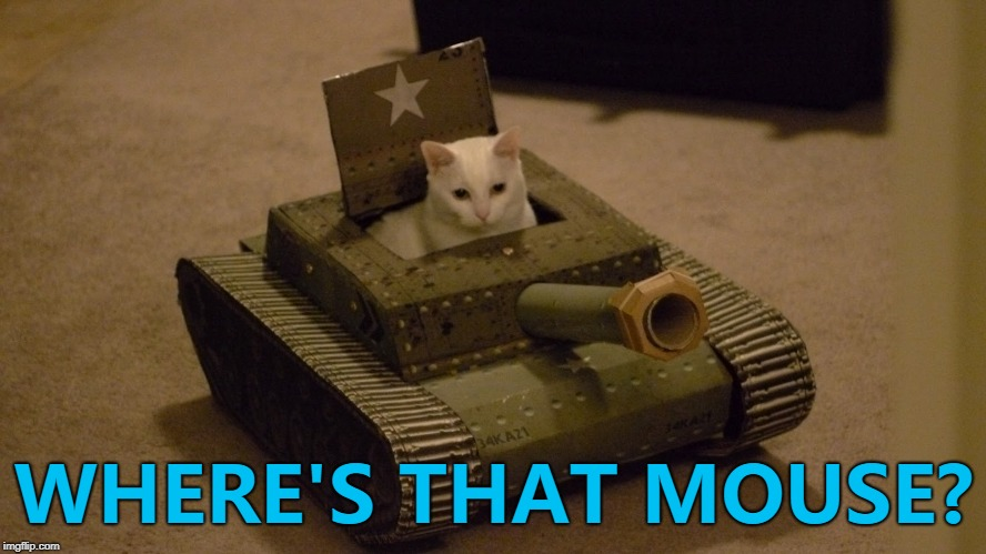 Gone, if they've got any sense... :) | WHERE'S THAT MOUSE? | image tagged in cat driving a tank,memes,cats,mice,animals | made w/ Imgflip meme maker
