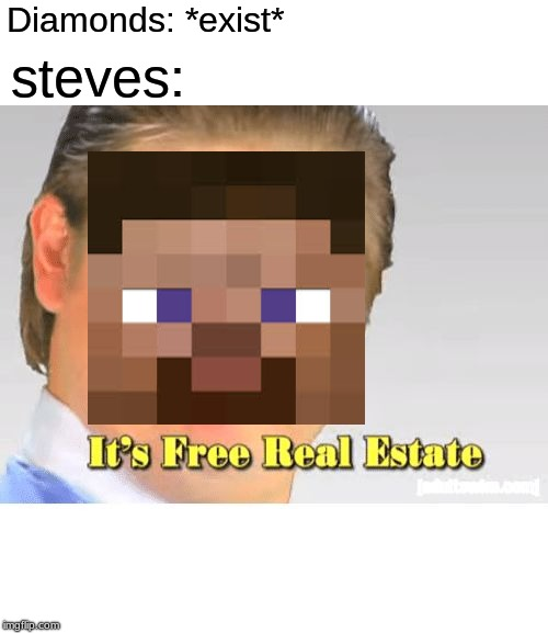 It's Free Real Estate | Diamonds: *exist* steves: | image tagged in it's free real estate | made w/ Imgflip meme maker