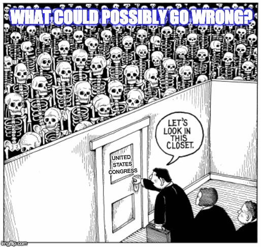 CONGRESSIONAL CLOSET | UNITED STATES CONGRESS WHAT COULD POSSIBLY GO WRONG? | image tagged in hidden secrets,skeletons,backfire | made w/ Imgflip meme maker