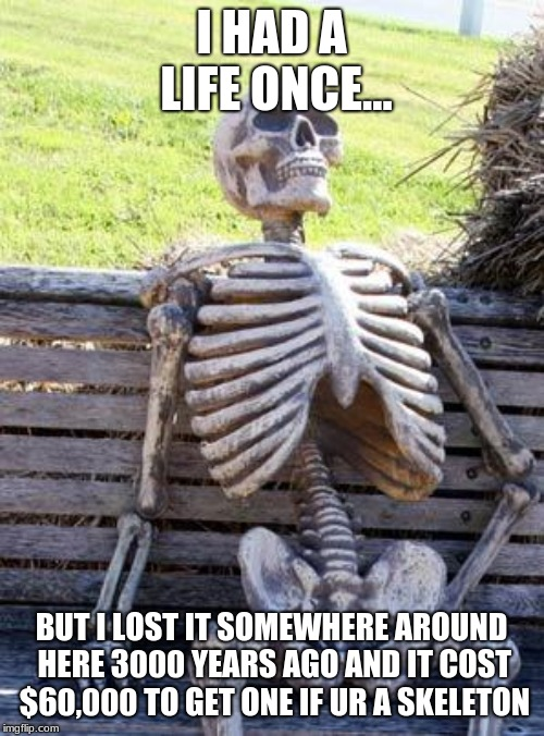 Waiting Skeleton Meme | I HAD A LIFE ONCE... BUT I LOST IT SOMEWHERE AROUND HERE 3000 YEARS AGO AND IT COST $60,000 TO GET ONE IF UR A SKELETON | image tagged in memes,waiting skeleton | made w/ Imgflip meme maker